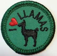 I Love Llamas, Lone Star Council