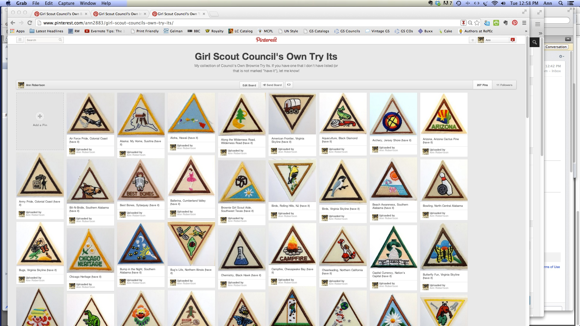 try its girl scout history project