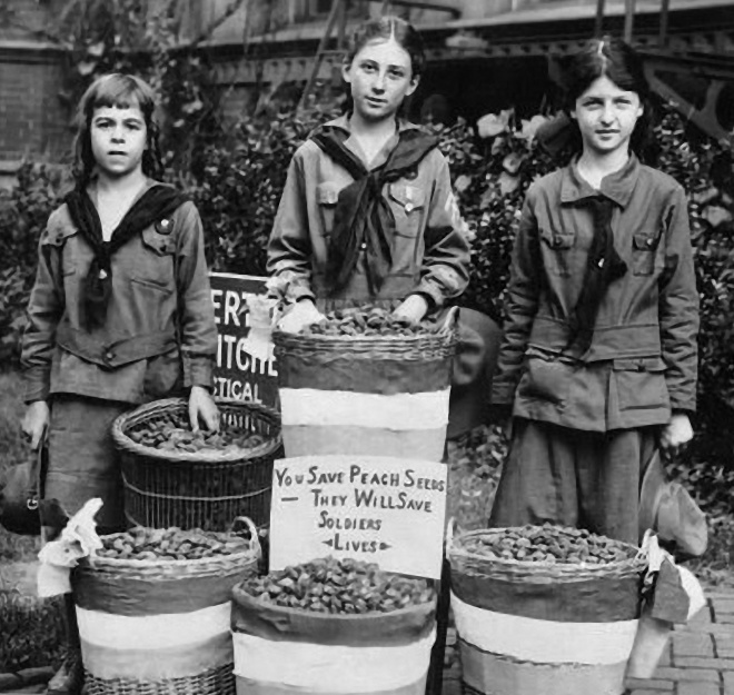"The ""Peach Pit Champions of Washington, DC, collected thousands of peach pits for the war effort.  From left: Lillian Dorr, Troop 60; Helen Collier, Troop 33; Eva Tarslush, Troop 60.  (The Rally, March 1919.)"