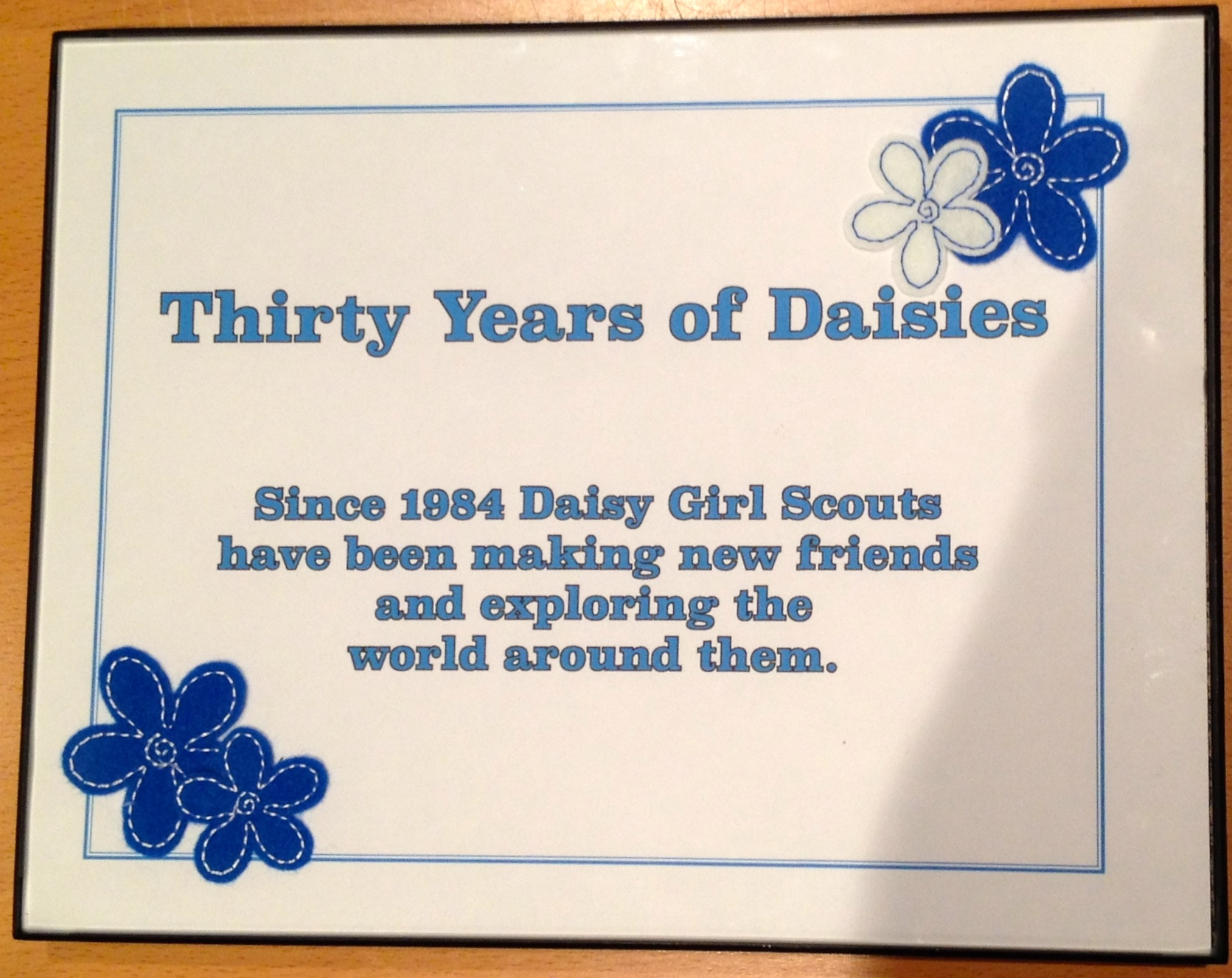 Daisy Girl Scouts Girl Scout History Project