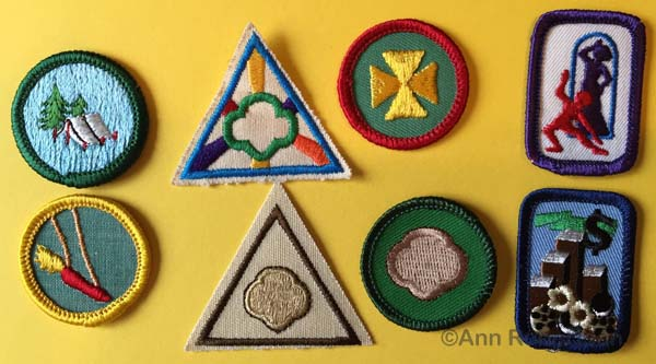 The most popular badges between 1963 and 2004.